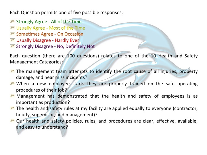 Health And Safety Perception Survey Questions Ekco Safety